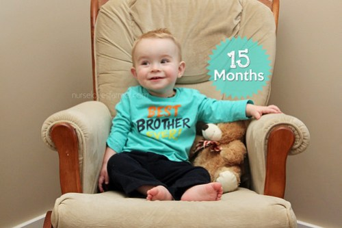 Ethan is 15 Months Old!