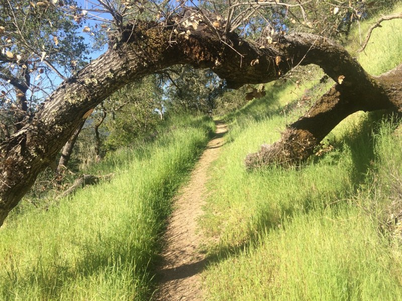 Trail at Calistoga Ranch