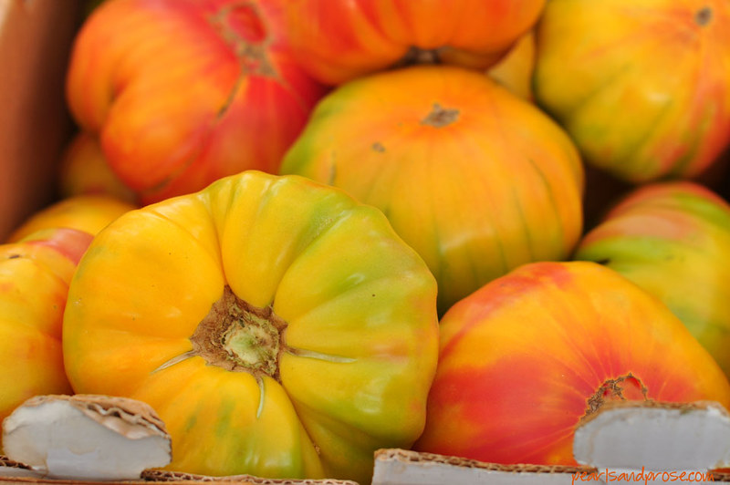 yellow_heirloom_tomato_web