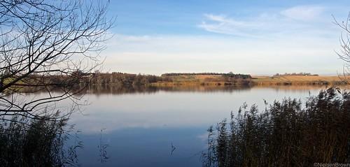Svogerslev Sø