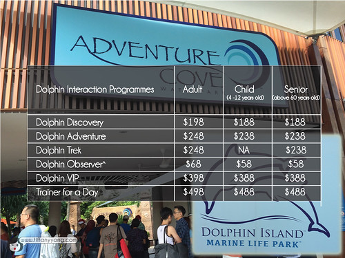 dolphin island marine life park
