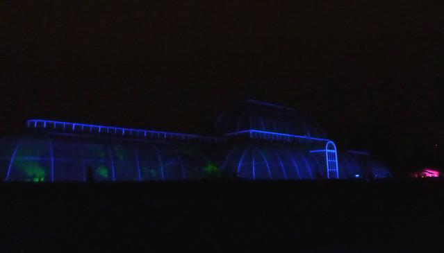 kew-gardens-after-dark-17
