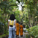 01 Viajefilos en Chiang Mai, Tailandia 086