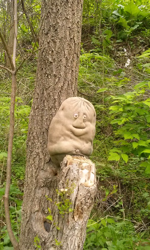 Tree potato