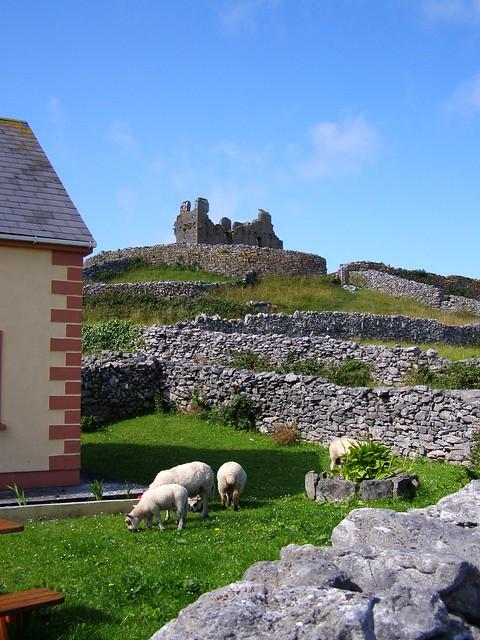 Caislean Ui Bhriain / O'Brien's Tower, Inis Oirr
