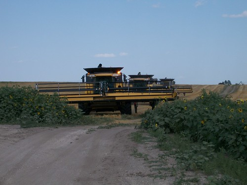 3 combines on the move