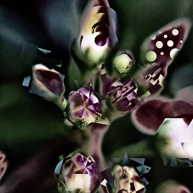 Fragment Flowers