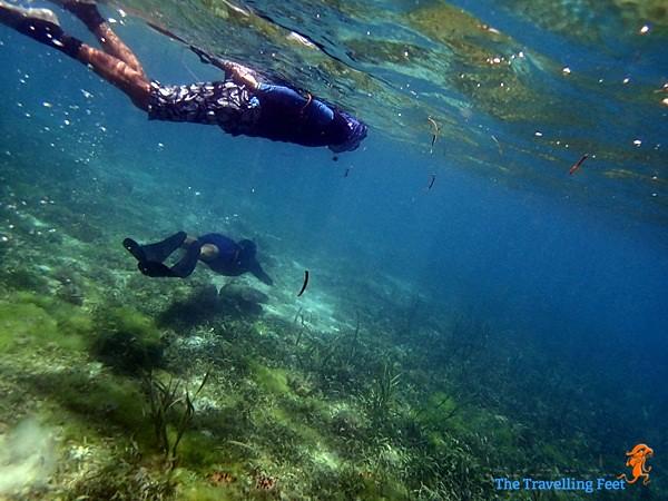 skin diving at Terra Manna Resort