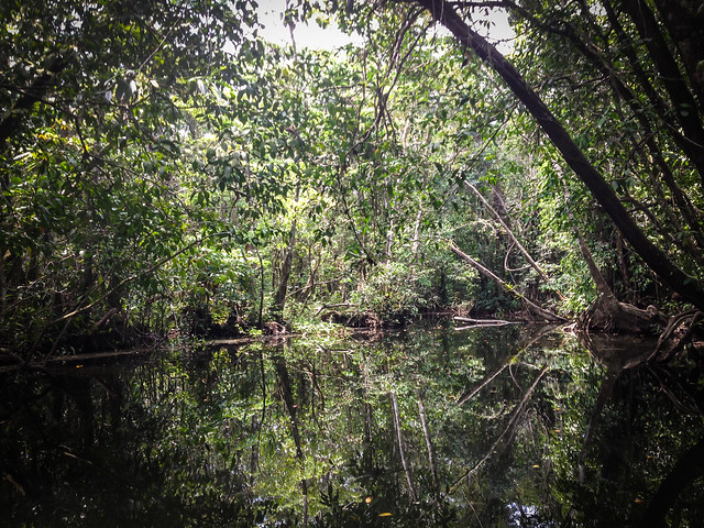 Exploring Rio Dulce-6