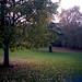 Poissy - Parc Messonier 04-10