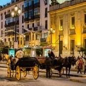 Seville Jan 2016 (12) 383