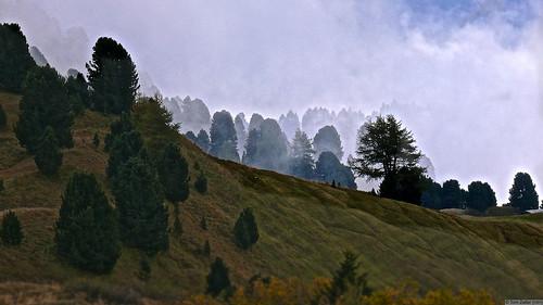 Südtirol 029