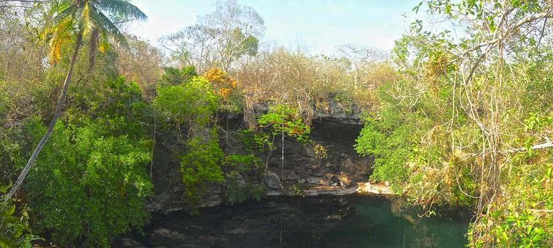 cenote 0002 cenote Kaipech, Yucatan, Mexico
