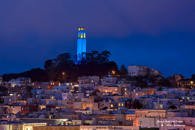 Blue & Gold Coit Tower