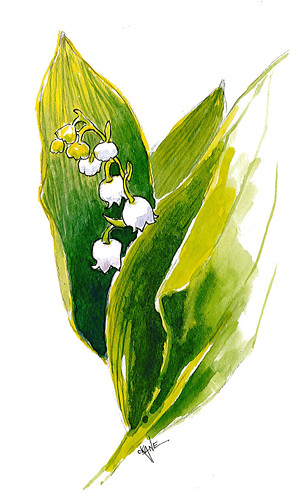 20130622_lily_watercolor