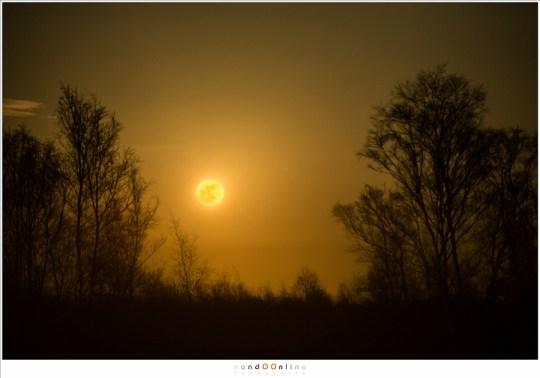 De rode gloed verdwijnt snel als de helderheid van de maan toeneemt.