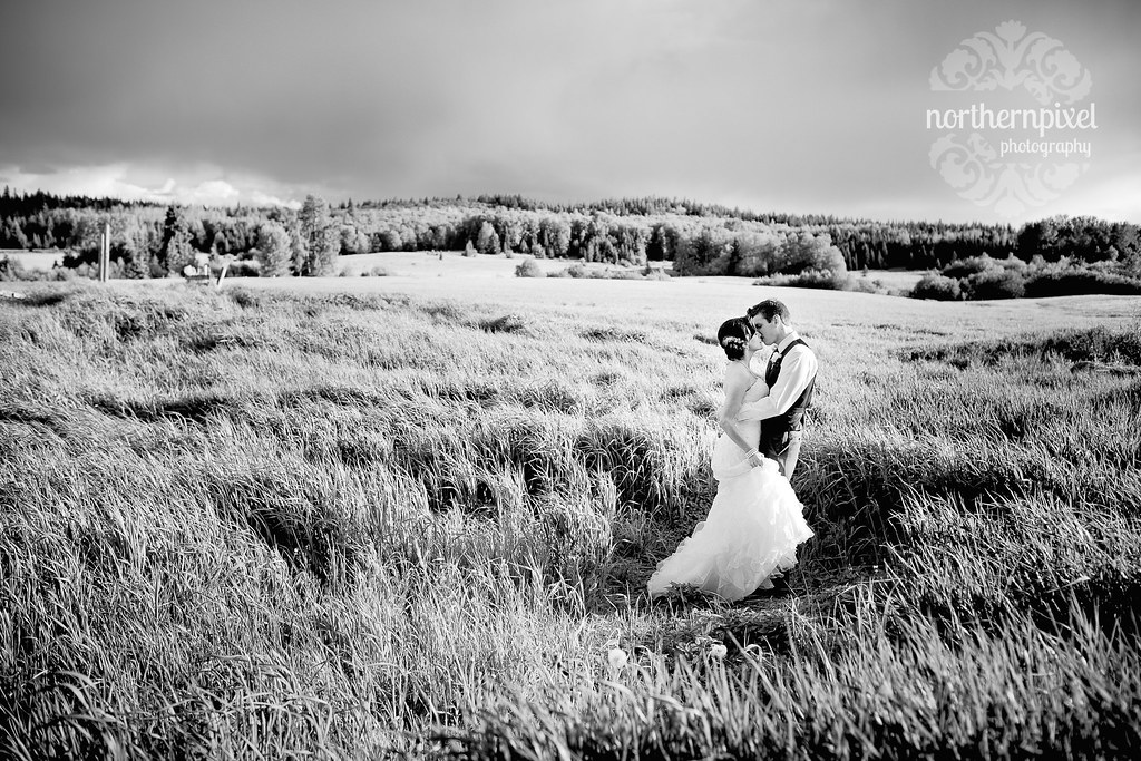 Newlyweds in the Field - Prince George BC Farm Wedding