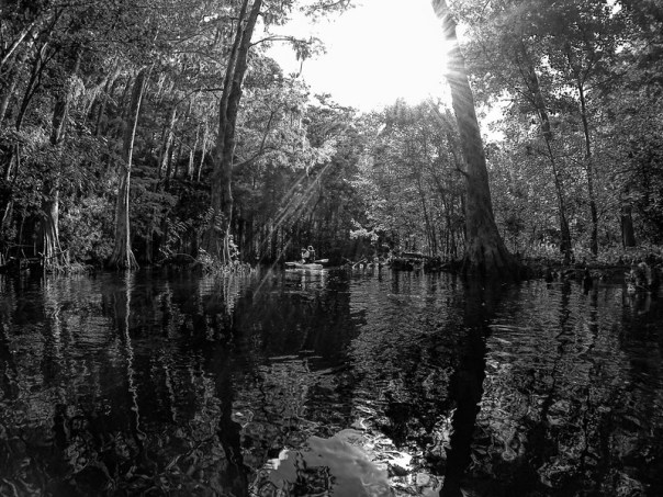 Paddling through Shingle Creek sunbeams and reflections
