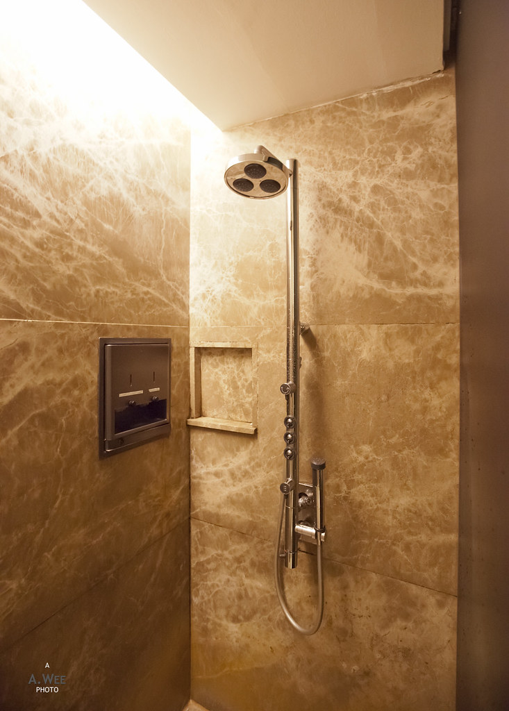 Shower stall in the SKL