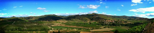 Mon Roussillon by Marc Lecha