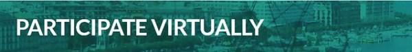 participate virtually