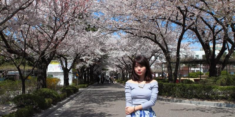 ▌首爾 ▌北村.三清洞 ‧ 最難忘滿是粉櫻的花洞