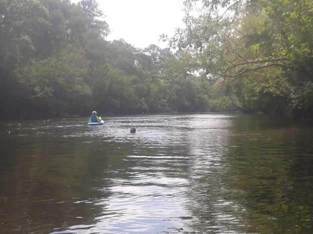 Brett in the water