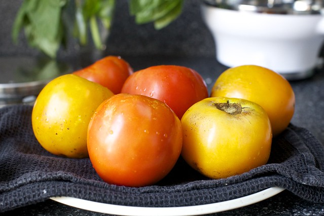 red and yellow medium-large tomatoes