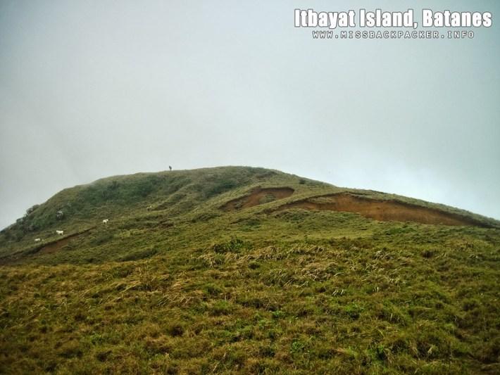 Mount Riposed
