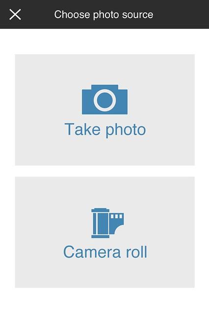 Camera Roll-5525