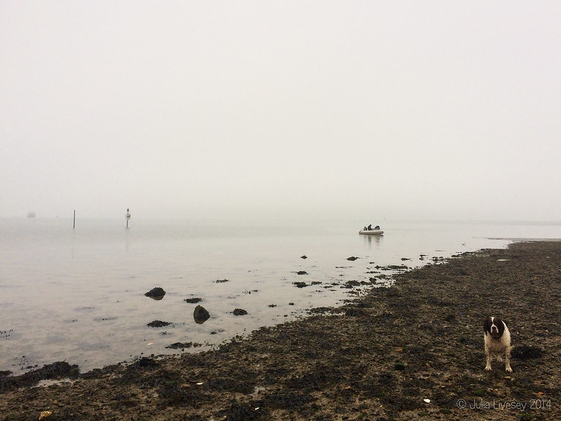 The fog hasn't put off these two men in their dinghy