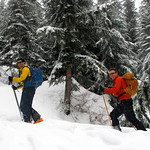 Backcountry Skiing on Black Mountain