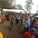 Gettin' Down at the Hoggetowne Medieval Faire