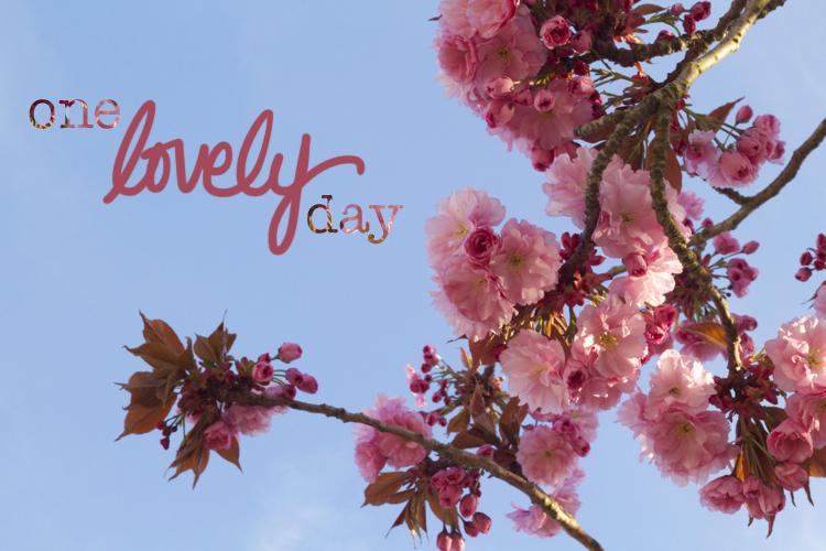 lovelyday