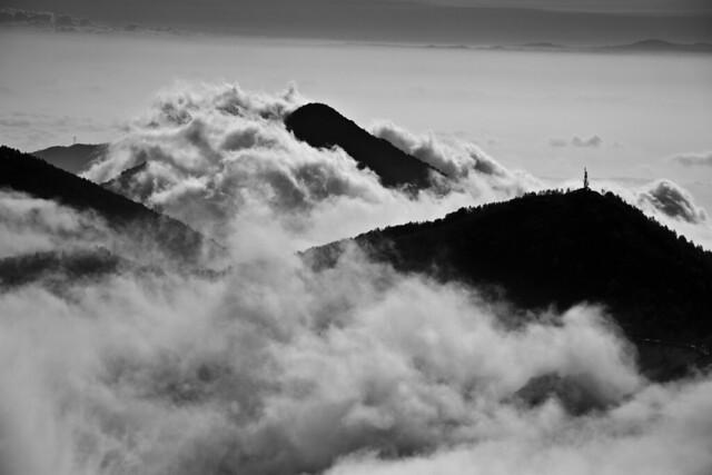 Nuvole a branchi