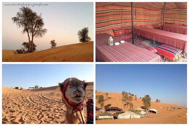 Desert Camping Ras Al Khaimmah