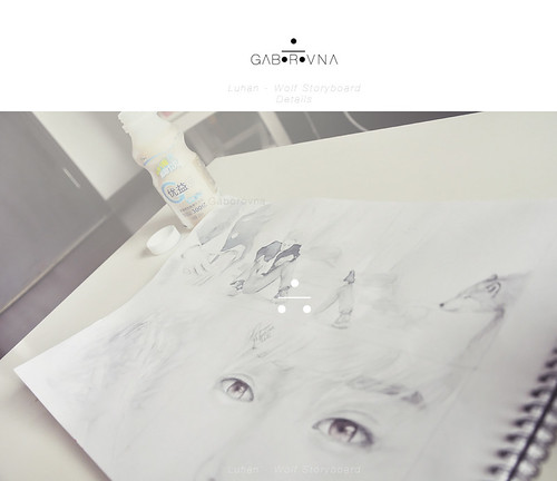 Luhan - Wolf Storyboard - Details