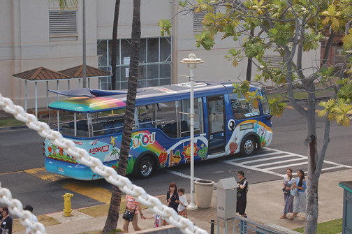 blue whale bus from FOC