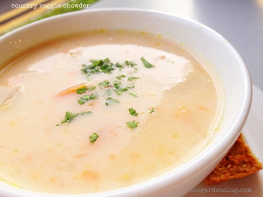 soup of the day: country veggie chowder