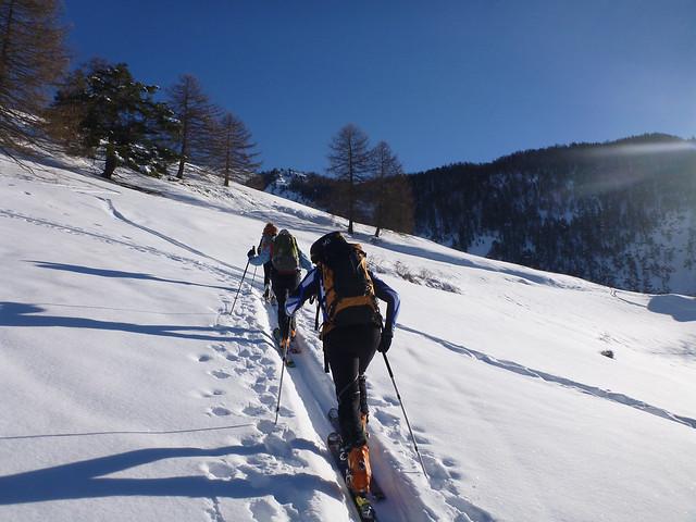 Seguire la scia