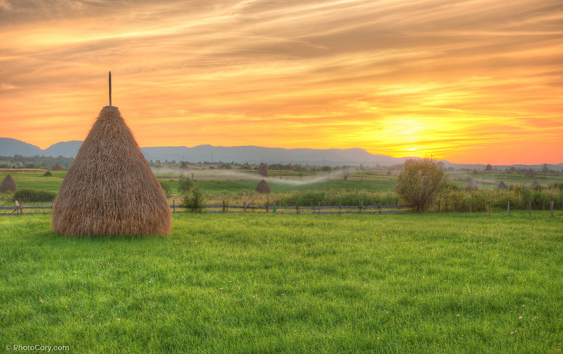 sunset haystack, apus capita fan