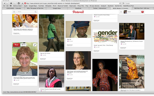 WILD Pinterest screen shot 2