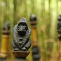 Rwanda: Gorillas!