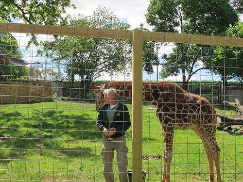Elmwood Park Zoo (2/6)
