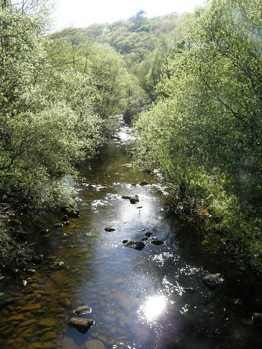 River Roeburn from Barkin Bridge