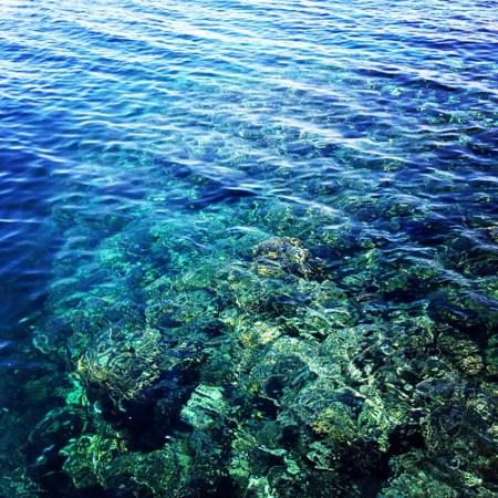 snorkeling barriera corallina a Marsa Alam