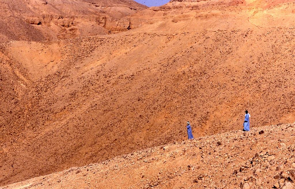 21. Travesía del desierto. Autor, wuji9981