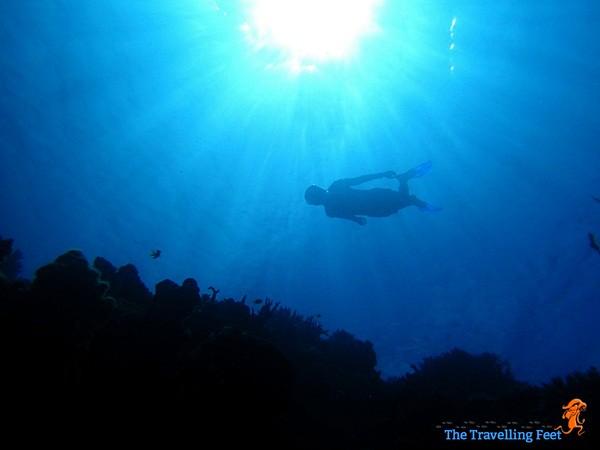 freediving at Terra Manna