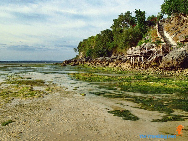 low tide at Terra Manna