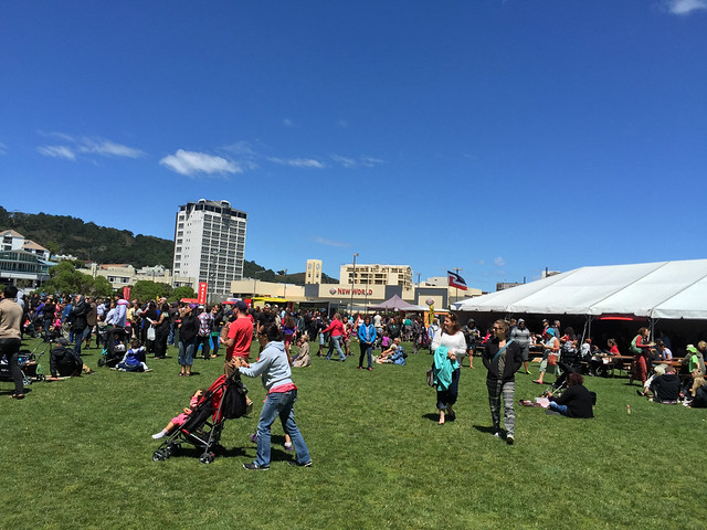 Waitangi Day at Waitangi Park, Wellington